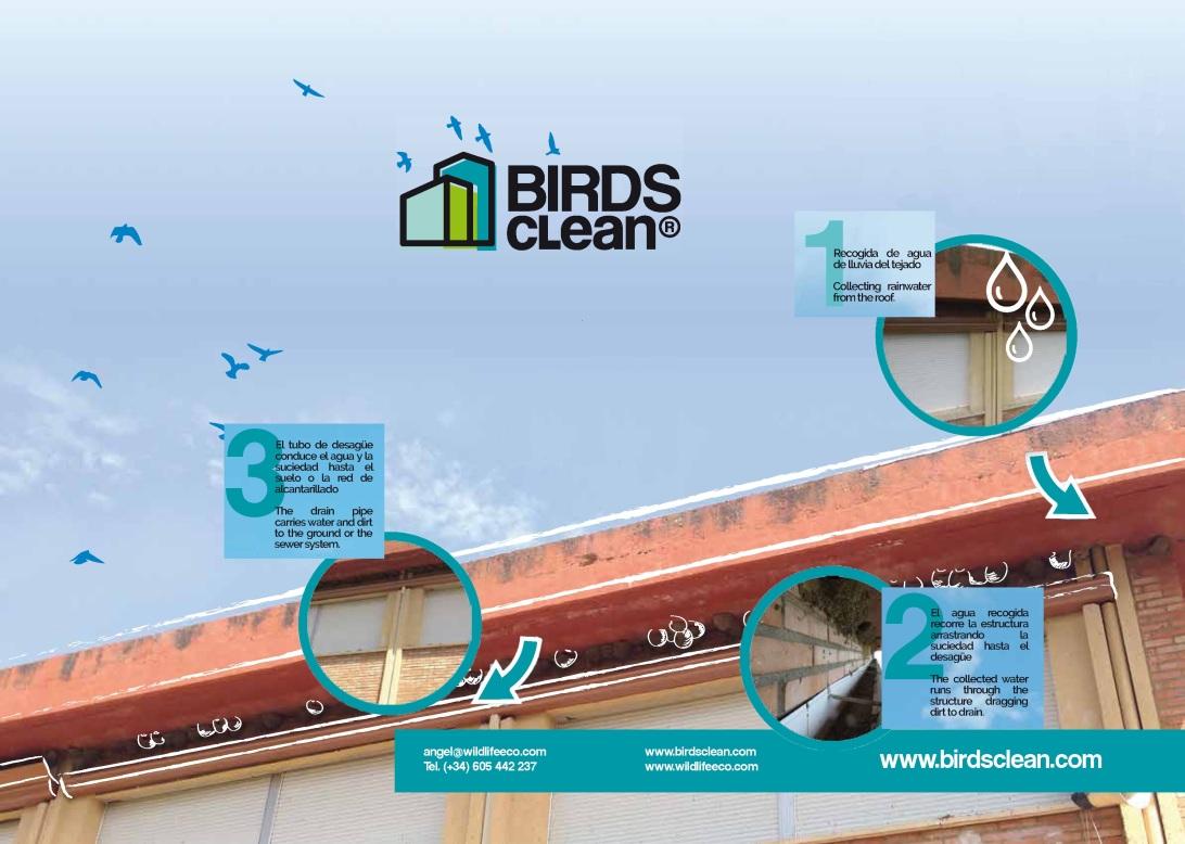 Imagen explicativa Birds Clean2