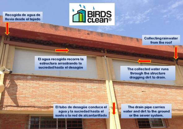 Solución desarrollada por Birds Clean.