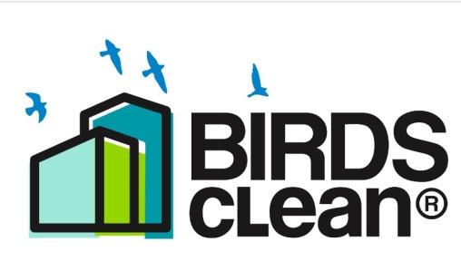 Birds Clean