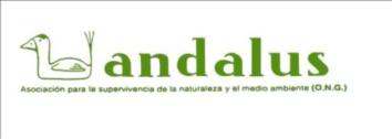 Asociación Andalus (Andalucía)