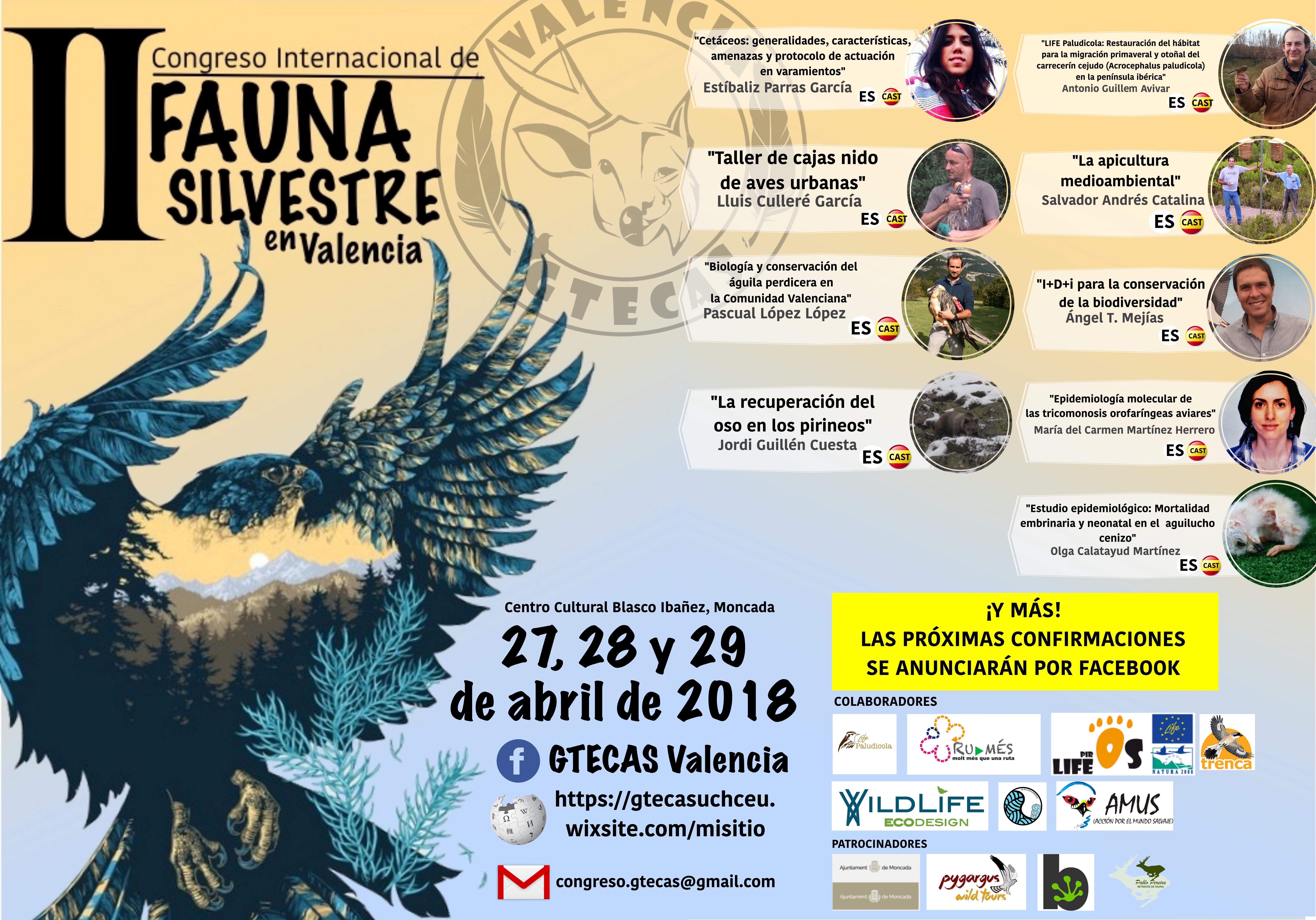 2º congreso GTECAS 2018